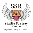 SSR-REGISTERED LOGO