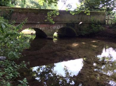 bridges-3-marcia-nightingale