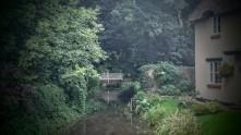 bridges-amy-wesley