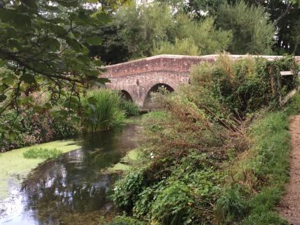 bridges2-marcia-nightingale